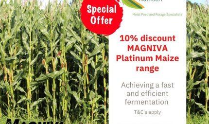 Special offer on MAGNIVA Platinum Maize range