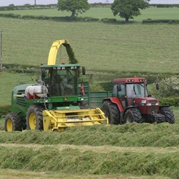 Home Grown Forages and Silage Additives